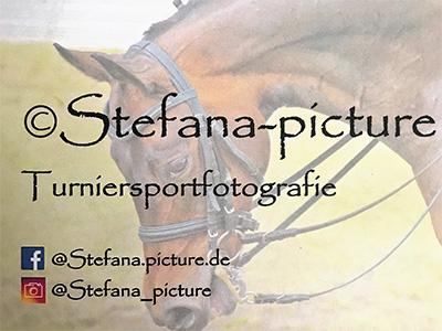 Sportpferde Bruhns Partner - Stefana Picture